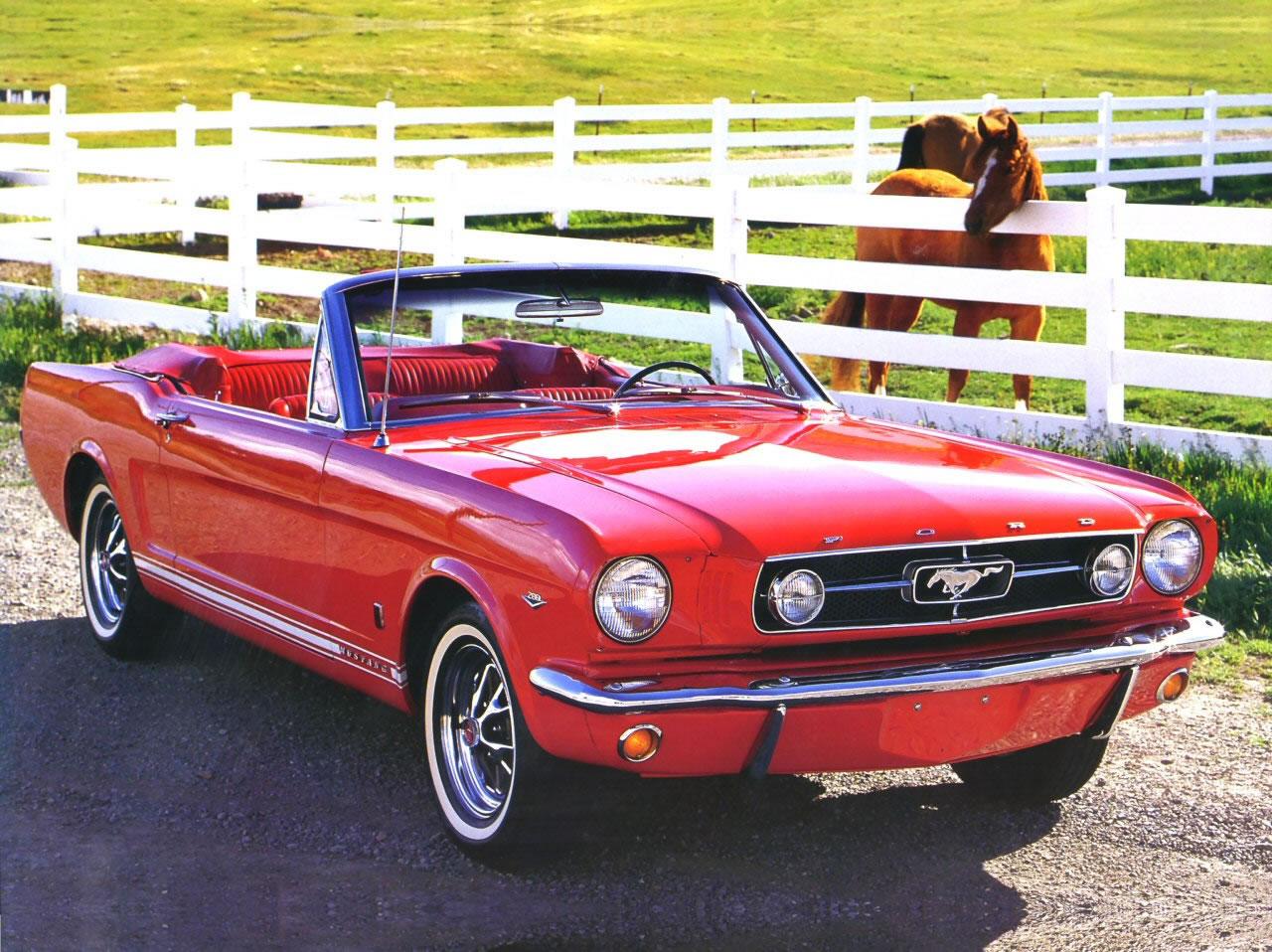 1965 Ford Mustang.jpg