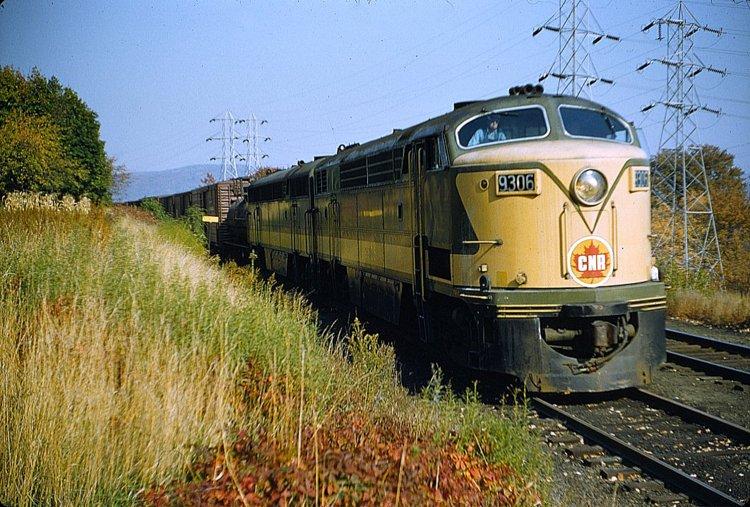 Diesel100890.TIF.jpg