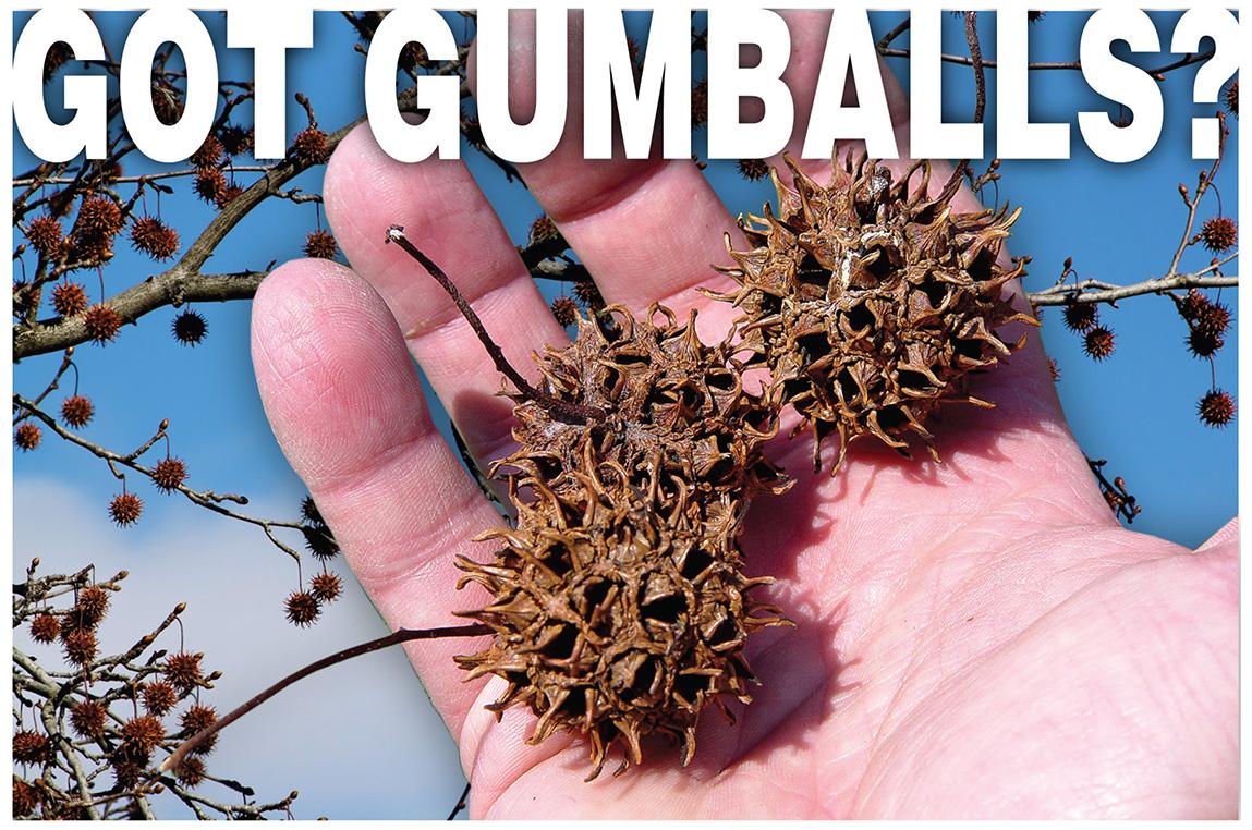 GotGumballs.jpg