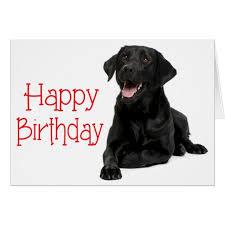 lab Happy Birthday download (1).jpg