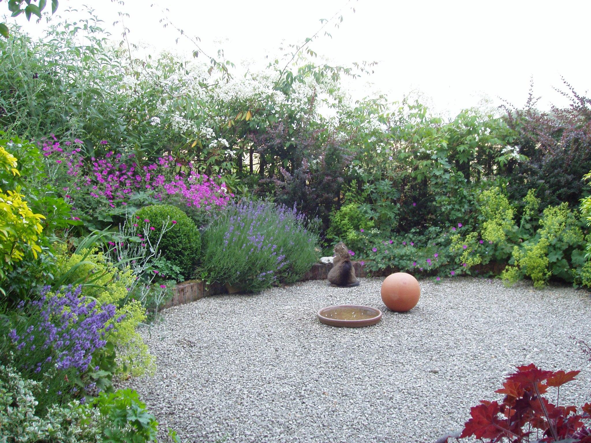 Dahlias garden.jpg