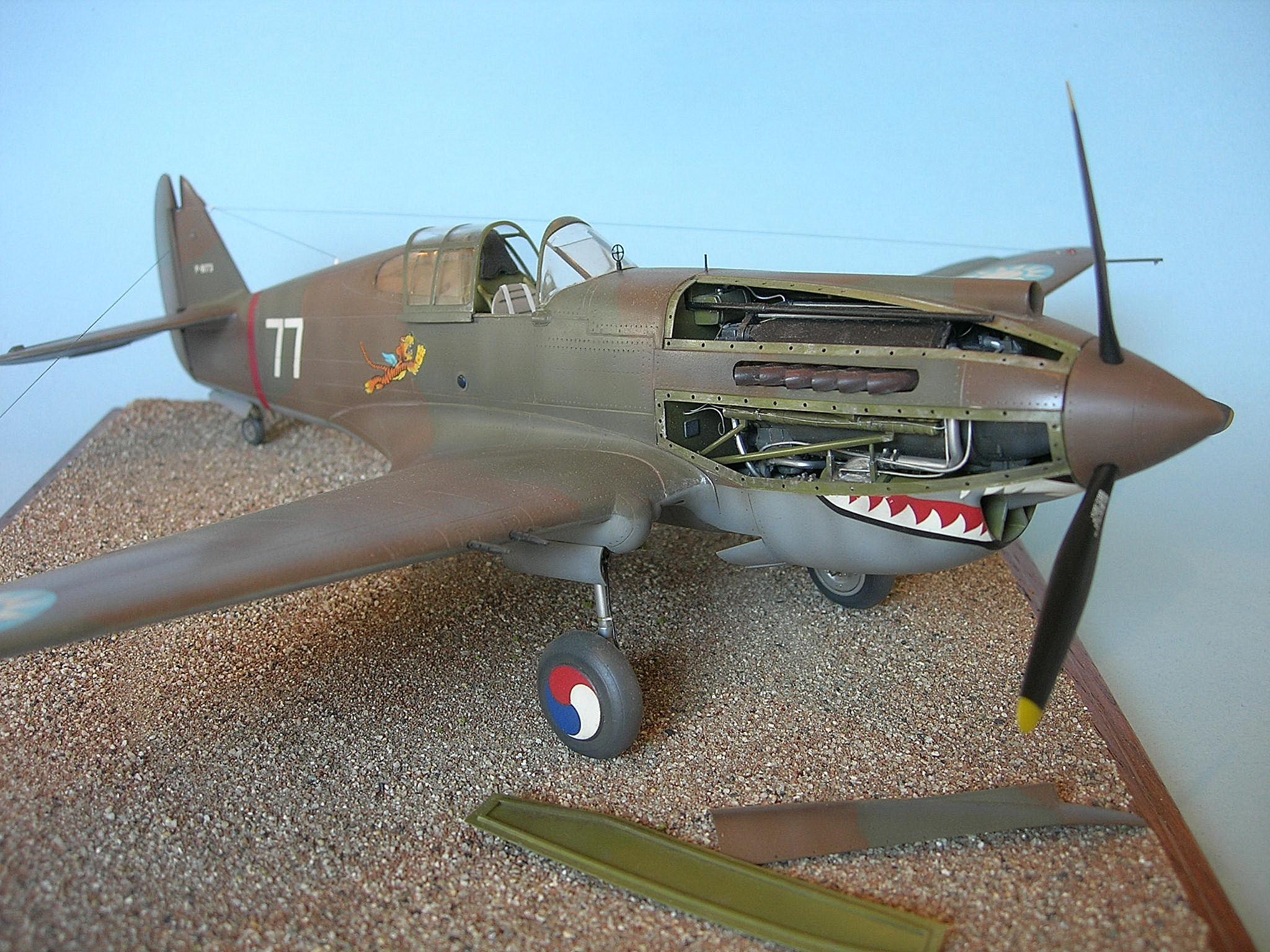 P-40B 004.jpg