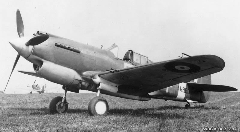p40warhawk-WRG-0021387.jpg