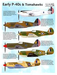 P-40B 403 Squadron =s-l300.jpg