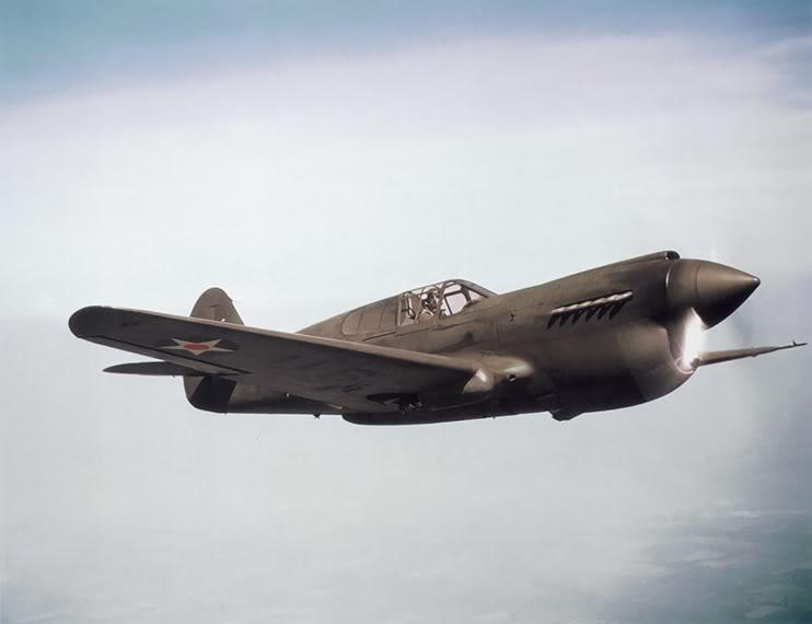 P-40D003b.jpg