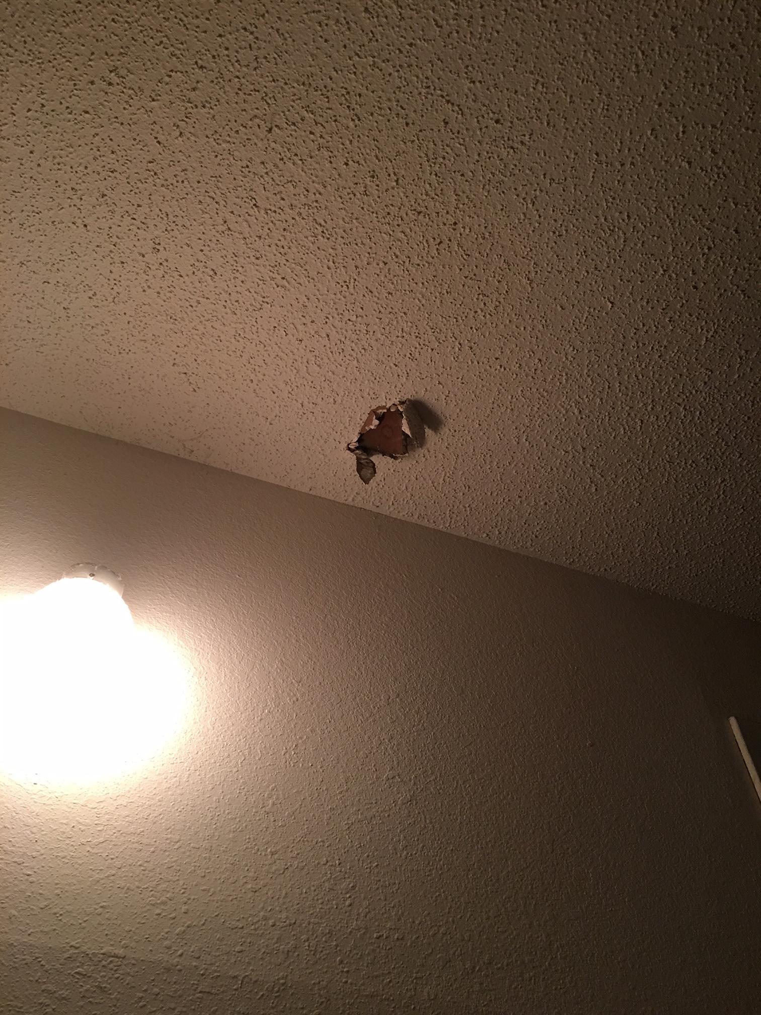 Ceiling damage.JPG