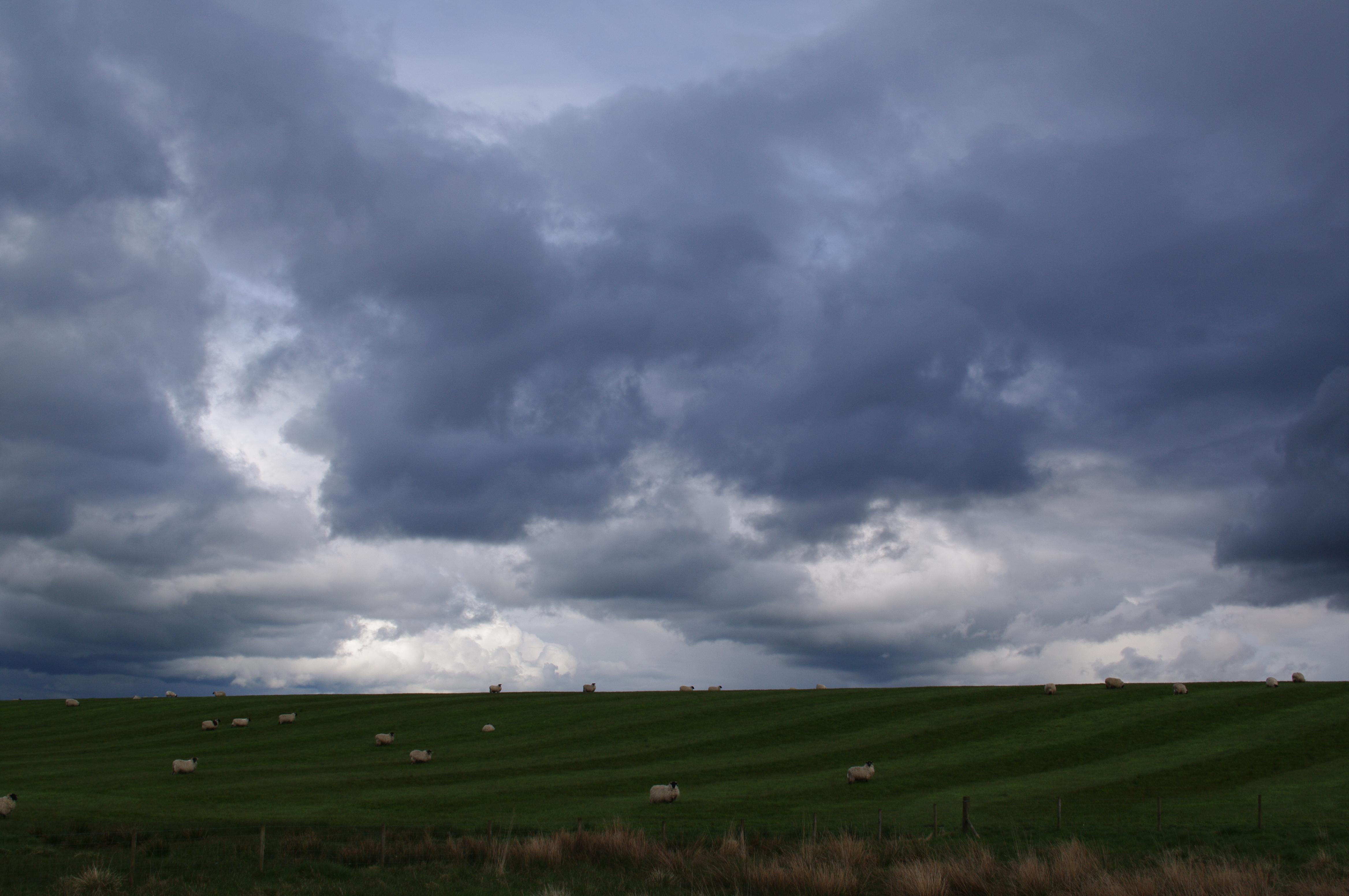 Northumberland_Skies1.jpg