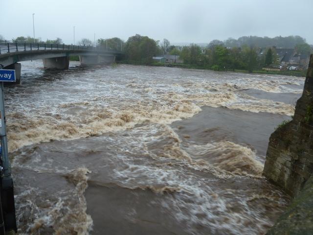 Tyne_at_Haydon_Bridge_May12__2_.jpg